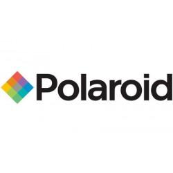 Polaroid Eyeglasses
